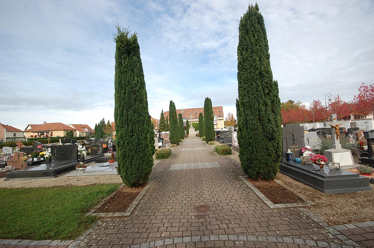 allée centrale du cimetière d'Achenheim
