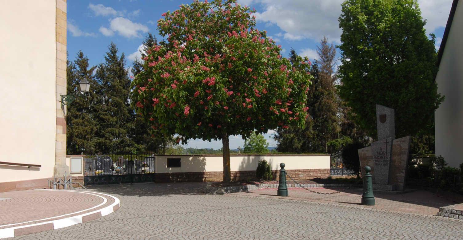 vue sur le monument aux morts du Cimetière de Munchhausen