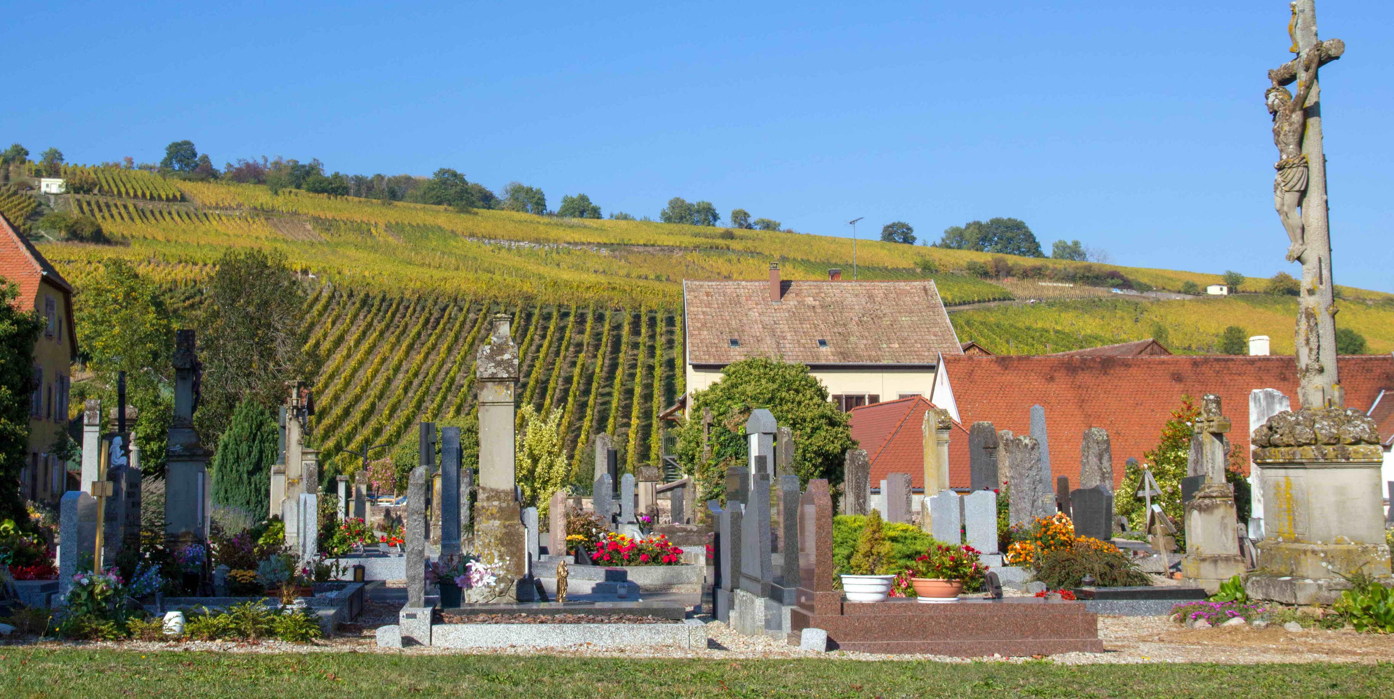 cimetière de riquewihr avec vue sur les vignes